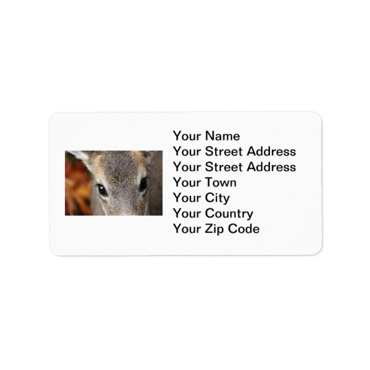 Deer Fawn Closeup Portrait Label