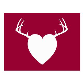 Deer Hunting Antlers heart Postcard