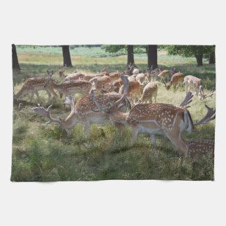 Deer in a park kitchen towel