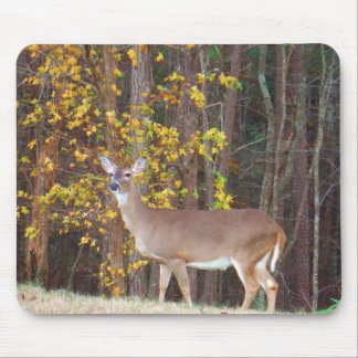 Deer in Front of Yellow Autumn Tree Mouse Pad