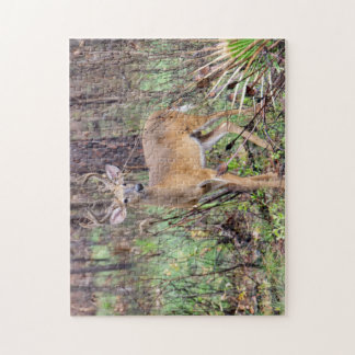 Deer in Silver Springs Jigsaw Puzzle