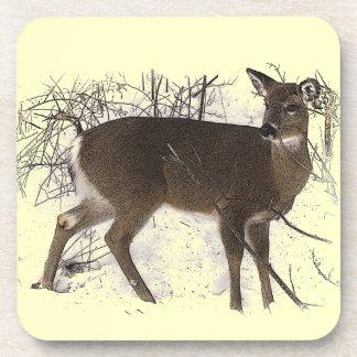 Deer in Snow Coasters