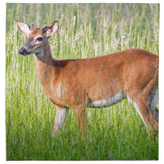 Deer In Tall Grass Printed Napkin