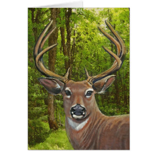 Deer in the Ash Meadow Card