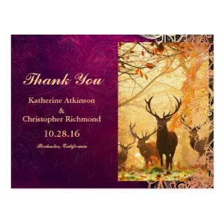 Deer in the autumn sun rays invitations postcard