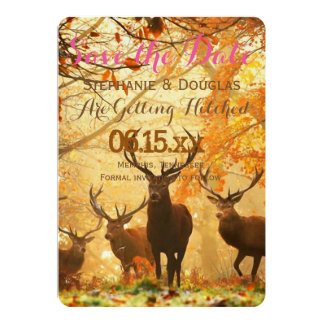 "Deer in the autumn sun rays /Save The Date 5"" X 7"" Invitation Card"