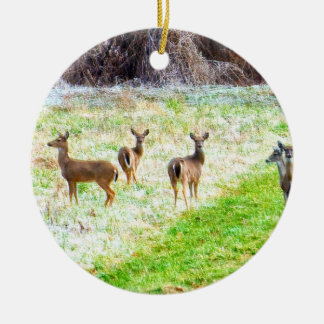 Deer in the Frost Round Ceramic Ornament