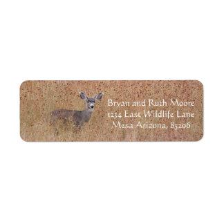 Deer in the meadow return address label