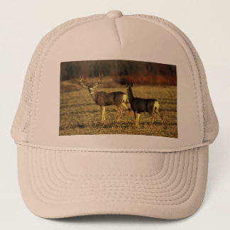 Deer In  the Morning Meadow Trucker Hat