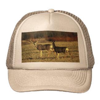 Deer In  the Morning Meadow Trucker Hat