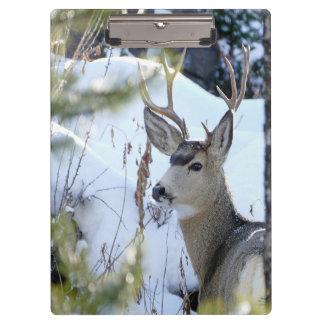 Deer In The Snow Clipboard