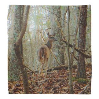 Deer in the wood. Camo Camouflage Kerchief