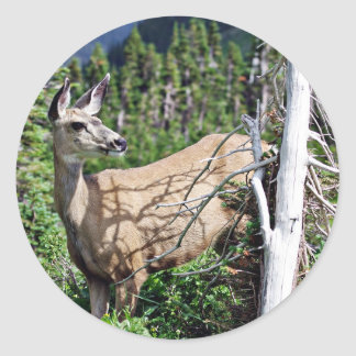 Deer in the Woods Classic Round Sticker