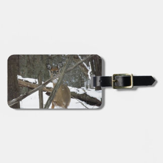 Deer In The Woods Luggage Tag