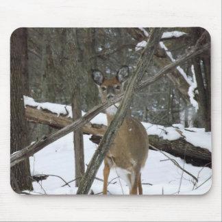 Deer In The Woods Mousepad