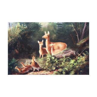 Deer in Woods Vintage Painting Stretched Canvas Print