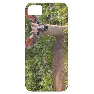 Deer IPhone 5/5s Case