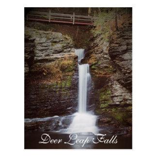 Deer Leap Falls Postcard