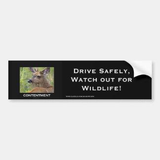 Deer Motivational Gifts Bumper Sticker