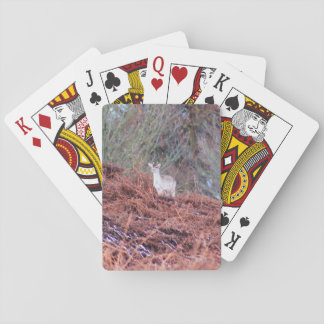 Deer on a hill playing cards