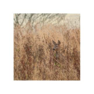 Deer photograph wood wall art