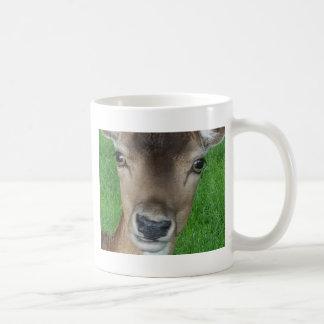 Deer Portrait Photography Wildlife Coffee Mug