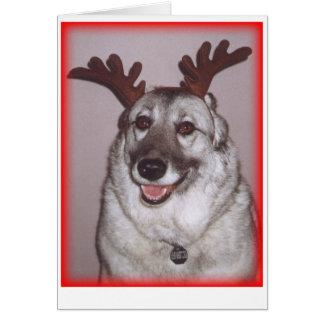 Deer Savannah with red Card