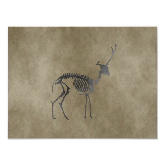 deer skeleton poster