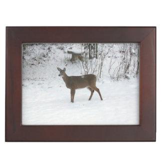 Deer Standing in Snow Keepsake Boxes