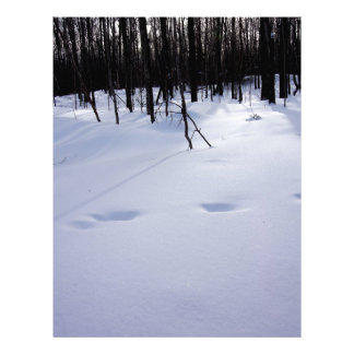 Deer tracks letterhead