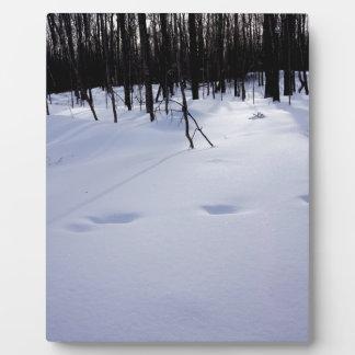 Deer tracks plaque