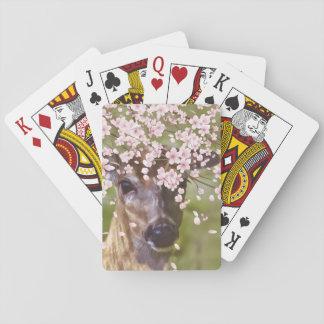 Deer Under Cherry Tree Poker Deck