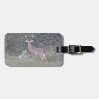 Deer walking on the ranch bag tag