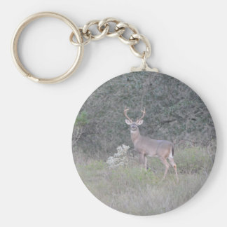 Deer walking on the ranch basic round button keychain