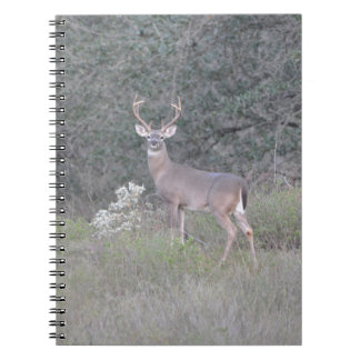 Deer walking on the ranch spiral note book