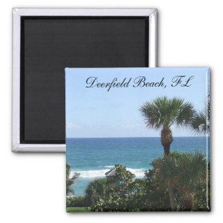 Deerfield Beach Florida Palm Trees Magnet
