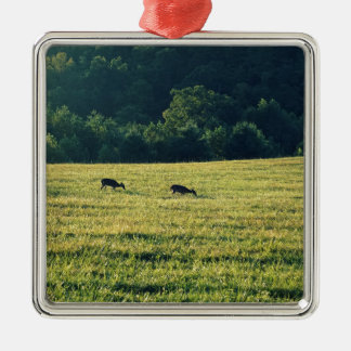Deers Grazing Silver-Colored Square Ornament