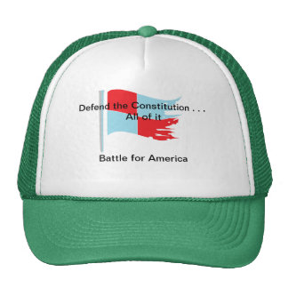 Defend the Constitution . . . All of it Mesh Hat