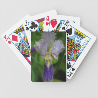 Defining Desire Bicycle Playing Cards