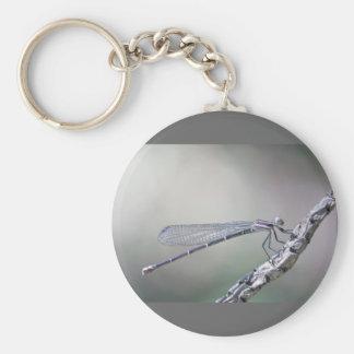 defining serenity keychain