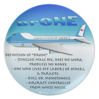 Definition of Drone Party Plates