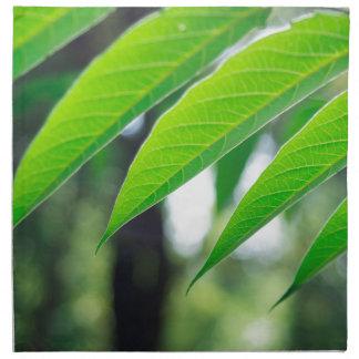 Defocused and blurred branch ailanthus cloth napkin