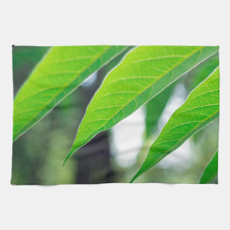 Defocused and blurred branch ailanthus kitchen towel