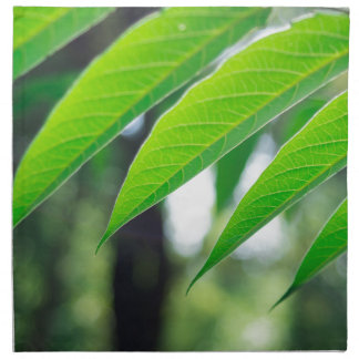 Defocused and blurred branch ailanthus napkin