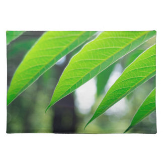 Defocused and blurred branch ailanthus place mat