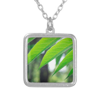 Defocused and blurred branch ailanthus silver plated necklace