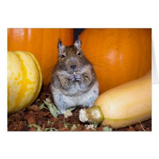 Degu with Pumpkin & Squash Card