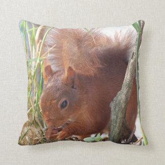 Dekokissen squirrel Squirrel Écureuil Throw Pillow
