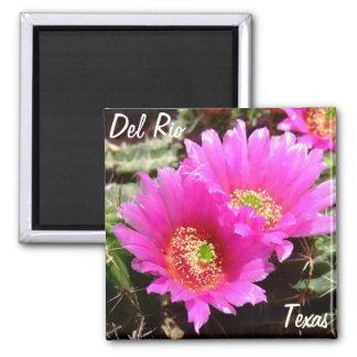 Del Rio Texas souvenirs pink cactus flower Magnet