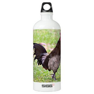 Delaware Blue Hen (Rooster) Water Bottle